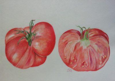 Tomate Rose de Bern